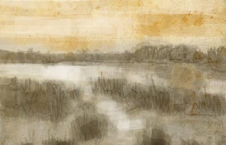 journal_marsh